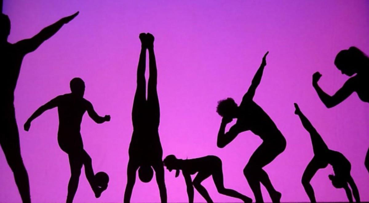 Schattentheater f r events die mobil s - Schattentheater selber machen ...
